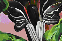 Georgia O'Keeffe, Jack-in-the-Pulpit No. ii, 1930.