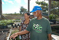 East End farmer Errol Watler takes Lands and Agriculture Minister Juliana O'Connor-Connolly, JP and a touring team through his greenhouse and plant nursery.